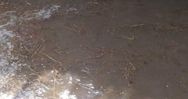غرق-أرضى-زراعية-بالشرقية-بسبب-انهيار-جسر-بحر-البقر-نتيجة-الأمطار
