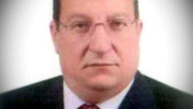 صورة شعبة المستوردين: مصر تستهلك 85 ألف طن شاي .. والمخزون جيد