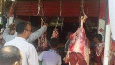 Photo of اسعار اللحوم اليوم بالاسواق المحلية