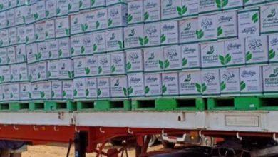 صورة توزيع 18 ألف و 569 كرتونة مواد غذائية مقدمة من بنك الطعام المصري للعمالة غير المنتظمة بالشرقية