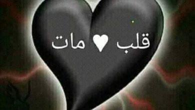 صورة قلب مات