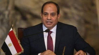 صورة الرئيس المصري عبد الفتاح السيسي: يطمئن المصريين..لا مشكلة في مخزون القمح الاستراتيجي