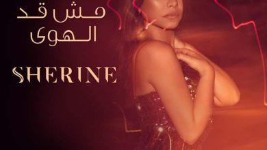 "Photo of أغنية ""مش قد الهوى"" لشيرين عبد الوهاب و""روتانا"" التي أشعلت مواقع التواصل الاجتماعي"