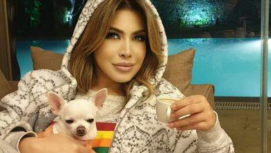 صورة نوال الزغبي برفقة كلبها بالبيجامة