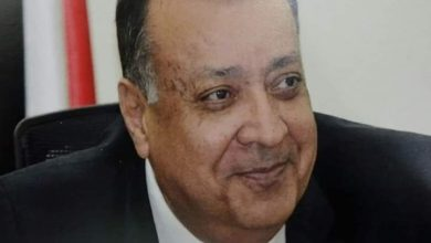 صورة محمد سعد الدين: بعد أزمة كورونا ستصبح مصر الملاذ الأمن لرؤوس الأموال العالمية