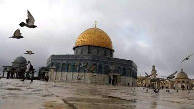 صورة ما هي حقيقة فتح المسجد الأقصى أمام المصلين؟