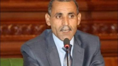 """صورة برلماني تونسي: تواصل """"الغنوشي"""" مع رؤساء تركيا وليبيا تجاوز لصلاحياته"""