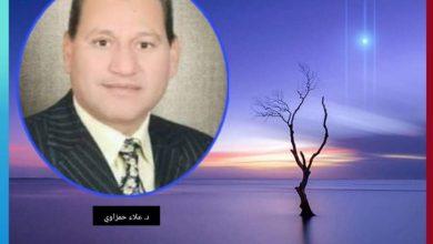 صورة دكتور علاء الحمزاوي يكتب قـــراءة تأملية في سورة يوسف ج(11)