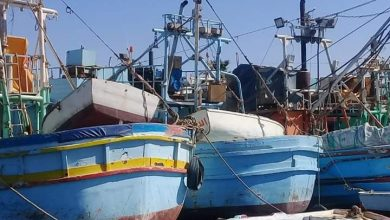 صورة بالصور فى الغردقة طاير يا هواء طاير على الميناء
