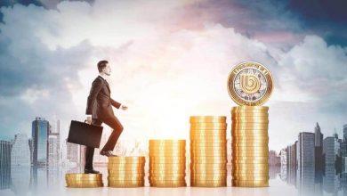 """صورة """"بيرونسي"""" تحقق نسبة نجاح 100% في تأمين محافظ المستثمرين"""
