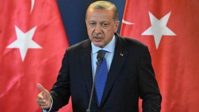 Photo of منظمة تكشف خطط اردوغان بجلب التنظيمات الارهابية من سوريا وافريقيا لمحاربة الجيش المصرى