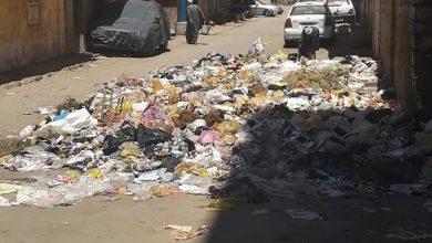 Photo of رغم تحذيرات الوقاية القمامة تملأ شارع ابن الفارض بعزبة شاهين في المنيا