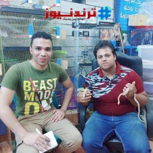فؤاد مجدي مربي الثعابين والعقارب والحرابي بالمنيا
