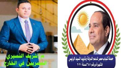 صورة دعم الدولة تدعم النسيري لإنتخابات النواب على مقعد المصريين بالخارج