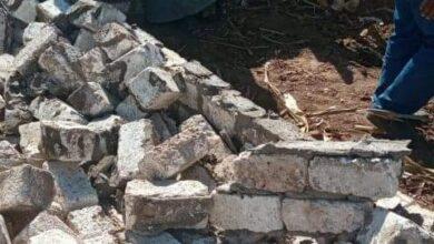 صورة البرجاية : إزالة حالة تعدى على أملاك الدولة بصفط اللبن وصيانة الكشافات بطريق أبومحارة بزهرة