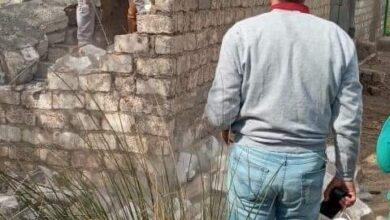صورة البرجاية بالمنيا:إزالة التعديات على شارع بقرية زهرة ومسقى البرجاية وتحرير محاضر للمخالفين