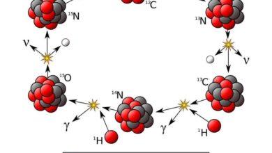 صورة العلاقة بين عنصري النيتروجينN والكربون C