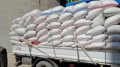 صورة شون وصوامع المنيا تستقبل 51 ألف طن من الأقماح