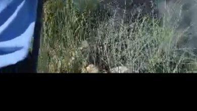 صورة قائد قطار ومساعده يخمدان حريقاً على جانب الخط الحديدي بقنا