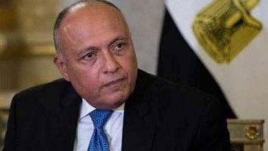 صورة سامح شكري يلتقي رئيس مجلس الأمن لشرح الموقف المصري من سد النهضة