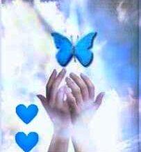 صورة معلومات عن الملائكة التي تحيط بالإنسان