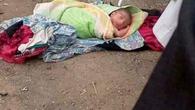 صورة العثور علي طفل حديث الولاده بجوار ترعة مركز قفط بجنوب قنا