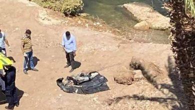 صورة عاجل.. انتشال جثة متحللة من نهر النيل بقنا