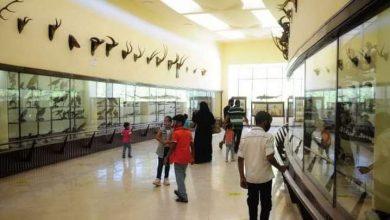 صورة تزايد الإقبال على حديقة الحيوان بالإسكندرية في ثالث أيام عيد الأضحى