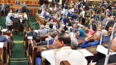 صورة عاجل.. أول تحرك برلماني بشأن نتائج مصر في الأولمبياد