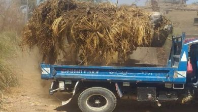 صورة رفع ١٨ طنًا من الأتربة والمخلفات الصلبة بقرية الشغب بالأقصر