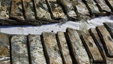 صورة ضبط تاجر مخدرات بحوزته 11 طربة حشيش و3 كيلو أستروكس ببني سويف