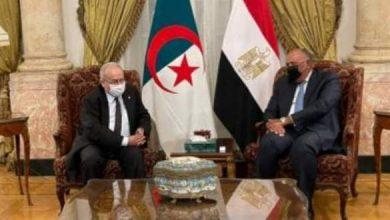 صورة مصر تعزي الجزائر فى ضحايا الحرائق.. وشكرى: نقف معكم فى هذا المُصاب الأليم