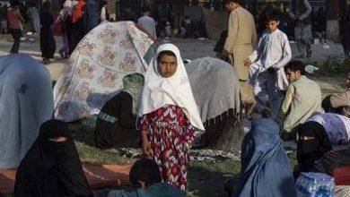 صورة كييف: 120 أوكرانيا يريدون مغادرة أفغانستان وسط تدهور الأوضاع الأمنية
