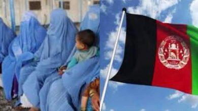 صورة حقوق المرأة في أفغانستان وموجة الهلع العالمي