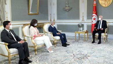 صورة رئيس الجمهورية التونسية يستقبل رئيس الجمعية المهنية التونسية للبنوك والمؤسسات المالية