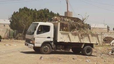 صورة مواصلة أعمال النظافة بقرية بنى محمد سلطان بالمنيا