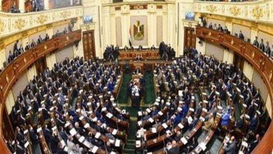 صورة بعد واقعة طفل المحلة.. برلمانية تطالب بتغليظ عقوبة الخطف وترويع المواطنين