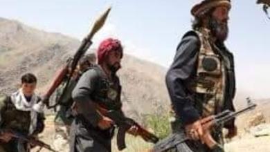 صورة في تعليق من رئيس منظمة الحق.. طالبان بين الرشد السياسي والإساءة للإسلام والمسلمين