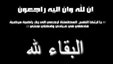 صورة المستشار عمر الفولي ينعي آل المستشار خالد الزايط
