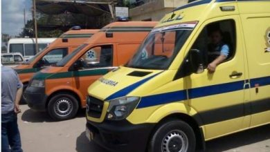 صورة بينهما طفلان .. وفاة 9 أشخاص من قرية واحدة بالمنيا .. في حادث تصادم