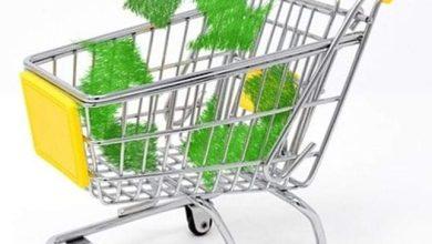 صورة الإقتصاد الأخضر والتحضر