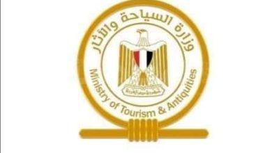 صورة تأشيرات اضطرارية بضمان وكيل سياحي لمواطني ثلاث دول للدخول لمصر